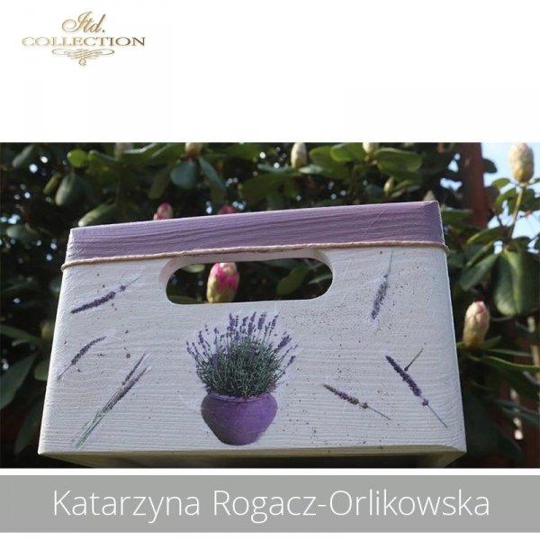 20190505-Katarzyna Rogacz-Orlikowska-R0151-example 03