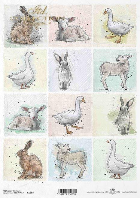 Pastelowe kolory, tagi, 12 małych obrazków, gęś, kaczka, królik, zając, owieczka, wiosna, Wielkanoc, wokół farmy
