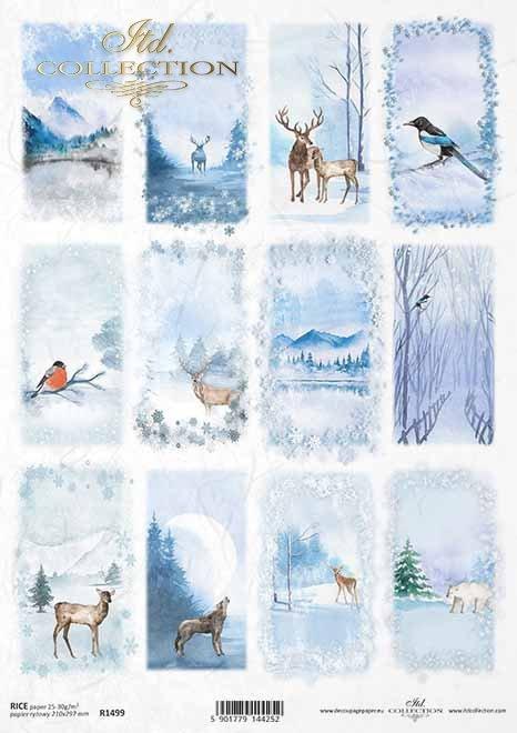 Vistas de invierno, animales, aves*Winteransichten, Tiere, Vögel*зимние виды, животные, птицы