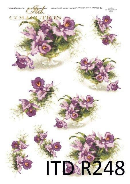 kwiaty, storczyki, storczyk, storczykowe bukiety, R248