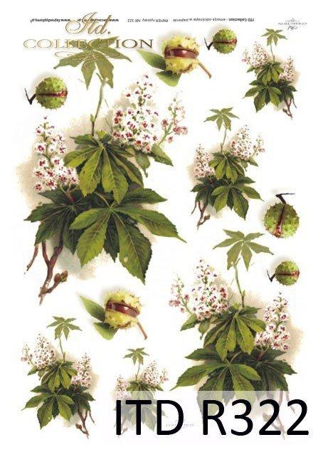 kasztany-kwiaty-kasztanowca-liście- gałązki-papier-decoupage-ryżowy-R0322