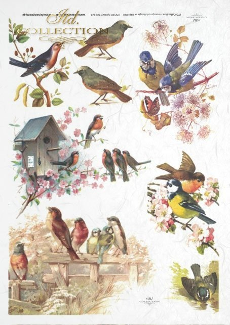 spring, flowers, birdhouse, bird, tits, birds