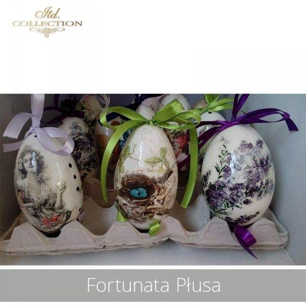 20190424-Fortunata Płusa-R0317 R0665 R0746-example 01