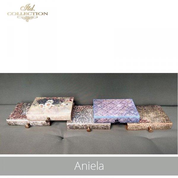 20190718-Aniela-R1439-R0295L-1420-R0276L-R1101-R1194-R075L-example 07