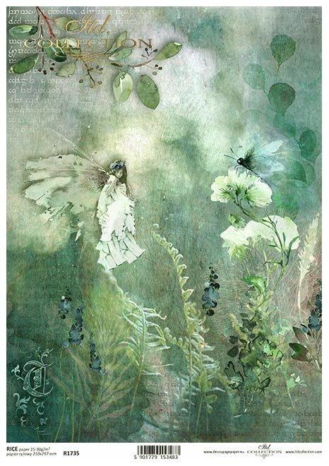 Seria Sekrety - Dolina Elfów. Leśna polana, paprocie, kwiaty, owady, łąka, motyl