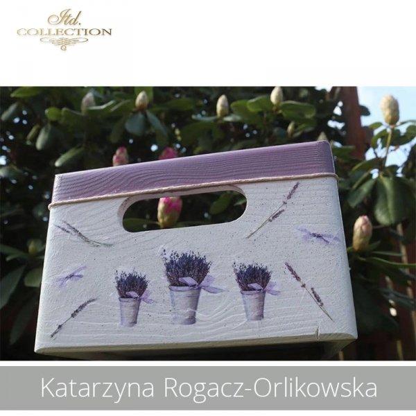 20190505-Katarzyna Rogacz-Orlikowska-R0040-example 03