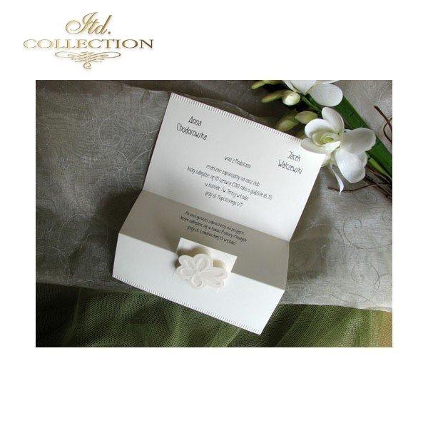 Einladungskarten / Hochzeitskarte 1685