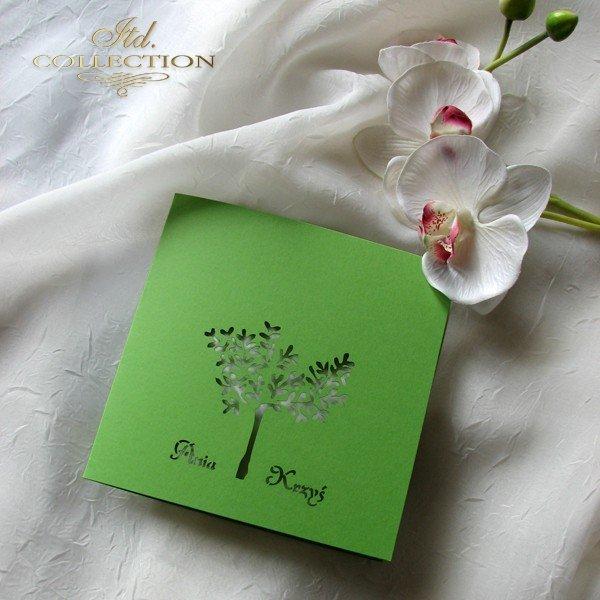 Invitations / Wedding Invitation 01697_86