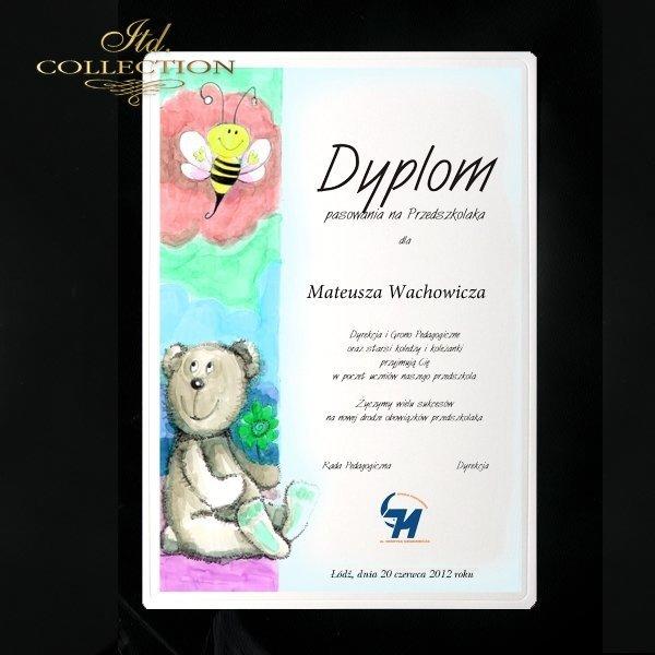 Diplomas Bear 3