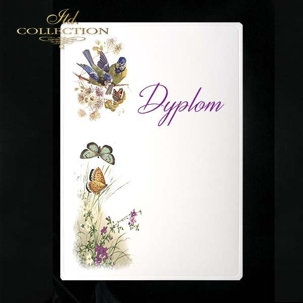 dyplom DS0114