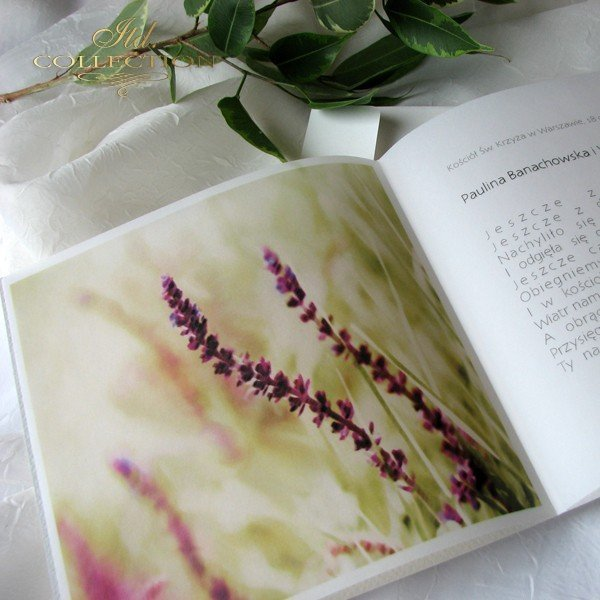 Zaproszenia ślubne / zaproszenie 01731_49_wrzosy