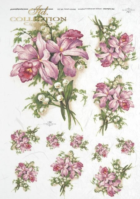 pink orchids, orchid, lily of the valley lilies, flowers, flower