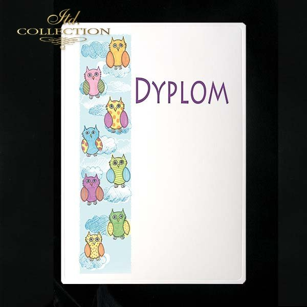dyplom DS0248