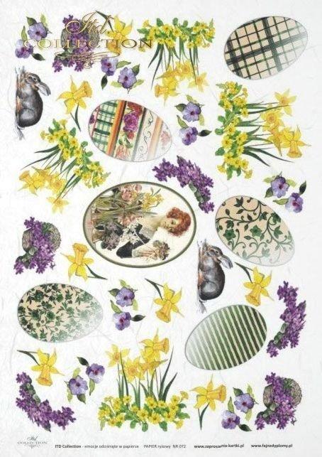 rabbit, rabbits, bunn, bunnies, Easter, spring, flower, flowers, daffodil, daffodils, egg, eggs, R072