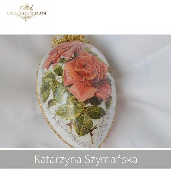 20190423-Katarzyna Szymańska-R0424-example 01