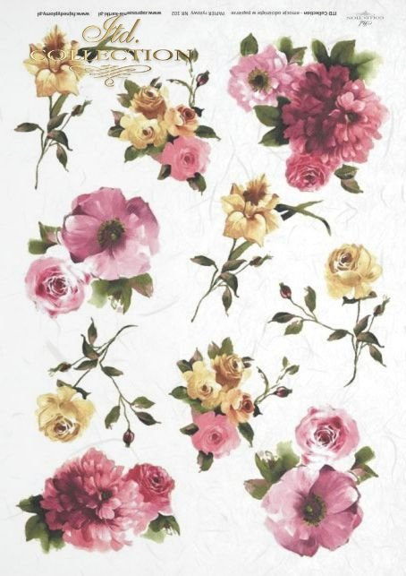 flower, flowers, bud, buds, leaf, leaves, rose, roses, garden, R360
