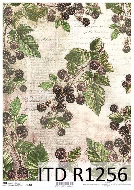 papier decoupage owoce, dzikie jeżyny*Paper decoupage fruit, wild blackberries