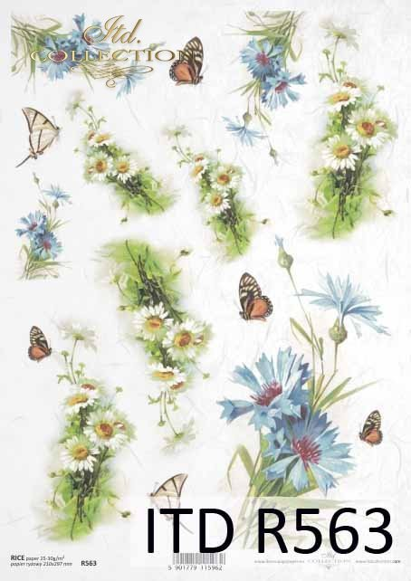 cornflower, marigold, butterfly, cornflowers, marigolds, butterflies, flower, flowers, leaf, leaves, flower petals, spring, R563