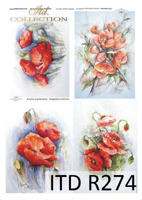 malarstwo współczesne, kwiaty, maki, mak, czerwone maki, Magdalena Rochoń, R274