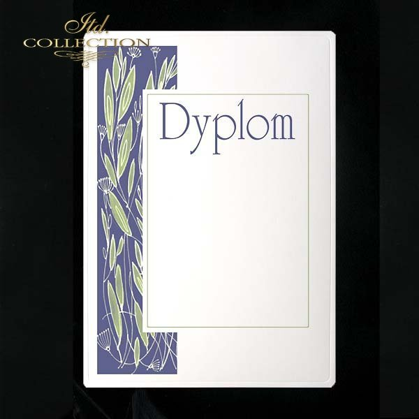 dyplom DS0091