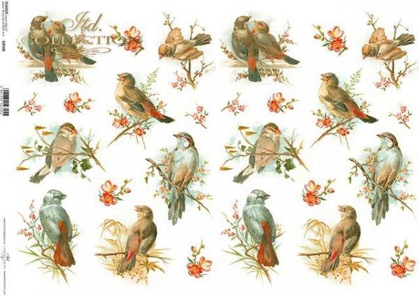 Decoupage papírové ptáci*Pájaros de papel decoupage*Decoupage Papier Vögel