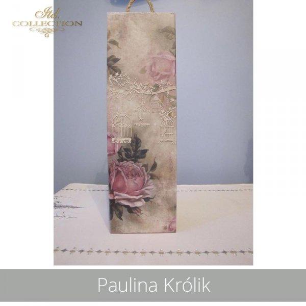 20190425-Paulina Królik-R1170-example 02