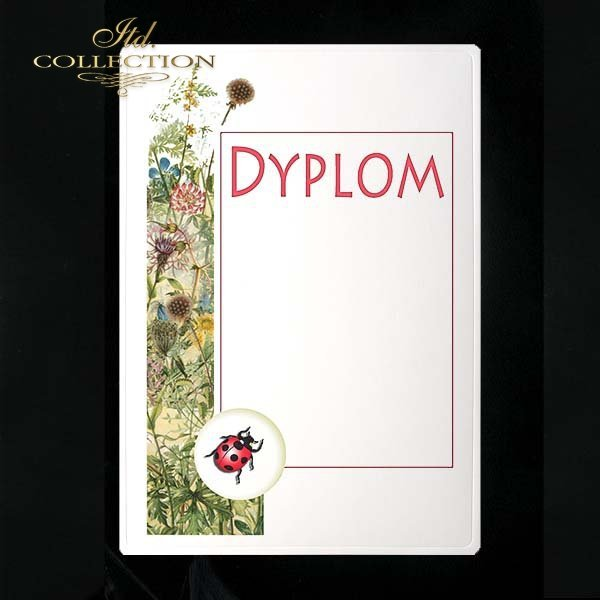 dyplom DS0225
