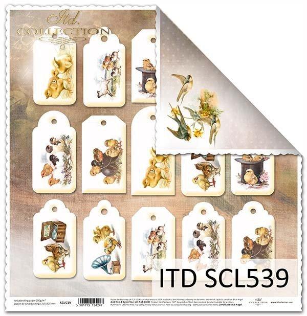 Papier scrapbooking SCL539