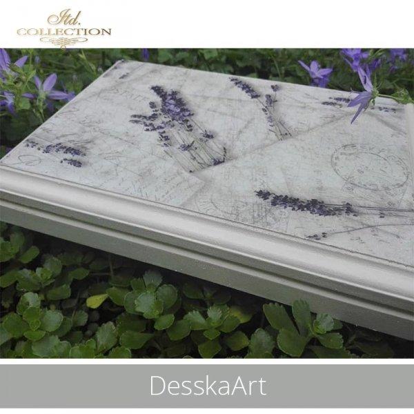20190613-DesskaArt-R0742-example 01
