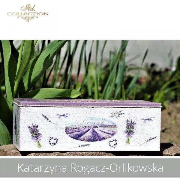 20190423-Katarzyna Rogacz-Orlikowska-R0041 - example 02