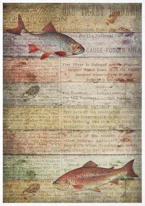 Set creativo sobre papel de arroz - Mundo de los hombres*Kreativset auf Reispapier - Männerwelt*Креативный набор на рисовой бумаге - мужской мир