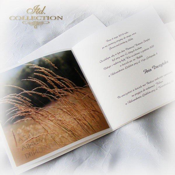 Zaproszenia  na Komunię Świętą 1747_20_trawy