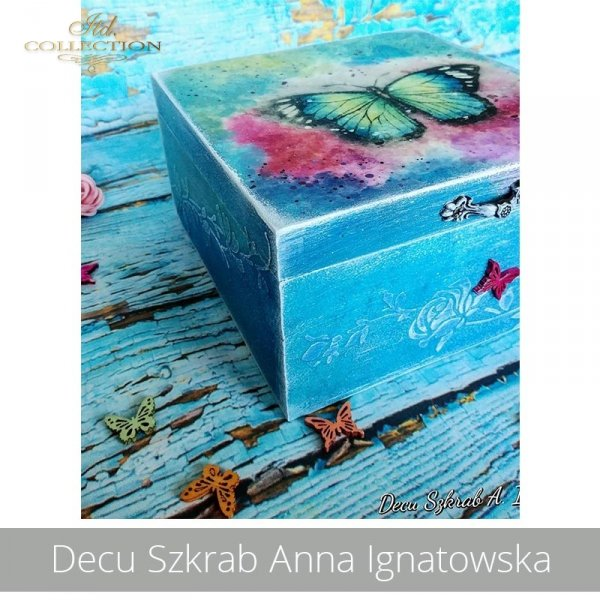 20190824-Decu Szkrab Anna Ignatowska-R1606-R0452L-example 02