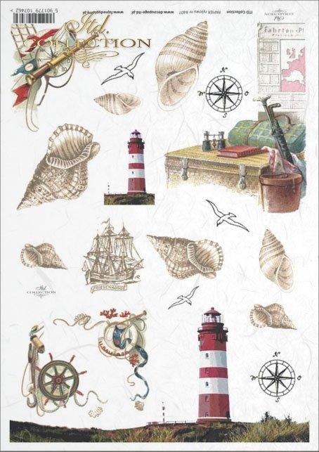 shell, shells, seashell, seashells, lighthouse, sea, wind rose, steering wheel, sailing ship, travel, holiday, R407