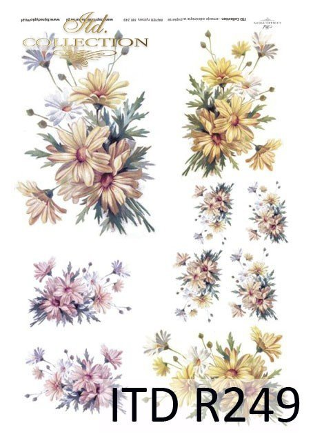 nagietki, nagietek, kwiaty, kwiatki,  bukiety kwiatów, polne kwiaty, R249