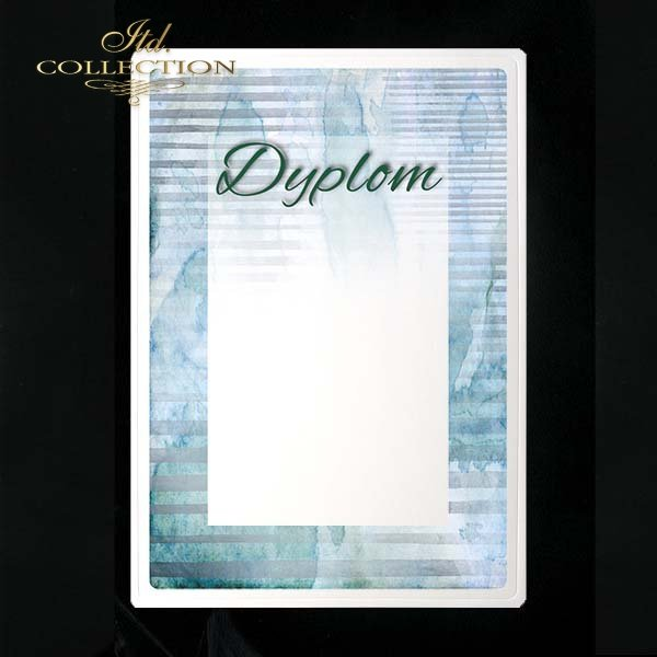 dyplom DS0216