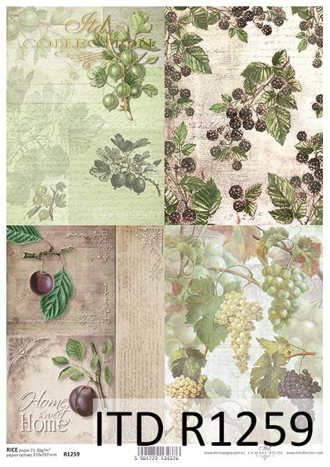 papier decoupage owoce, winogrona, agrest, śliwki, jeżyny*Paper decoupage fruits, grapes, gooseberries, plums, blackberries