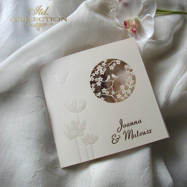 Zaproszenia ślubne / zaproszenie 1726_41_wrzos