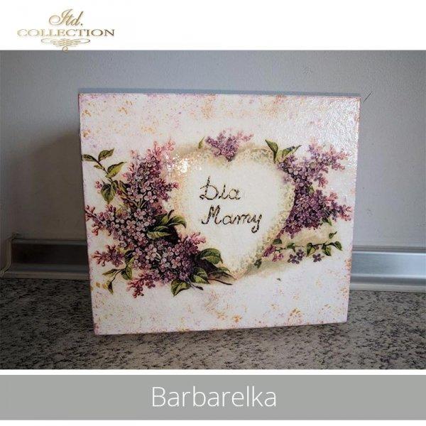 20190504-Barbarelka-R0295-example 02