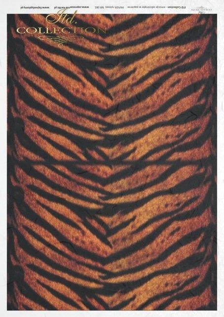 tiger, skin, R081