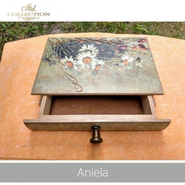 20190718-Aniela-R1101--R1194-R075L-example 01