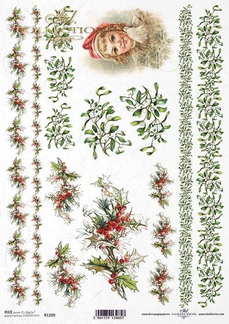 Christmas, festive trails, holly, mistletoe*Weihnachten, festliche Wege, Stechpalme, Mistel*Navidad, senderos festivos, acebo, muérdago
