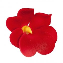 Miltonia kwiat cukrowy na tort 5cm czerwony 1szt