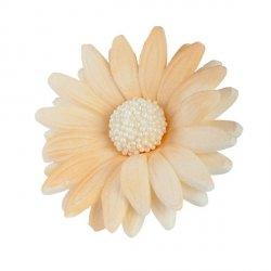Kwiaty cukrowe MARGARETKA 10szt ecru