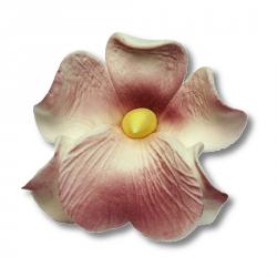Miltonia kwiat cukrowy na tort 5cm wrzosowy 1szt