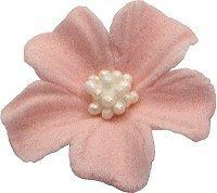Niezapominajka kwiaty cukrowe 10szt łososiowe