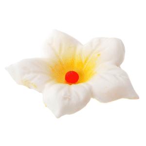 Modecor - Zestaw do robienia kwiatów BLOSSOM
