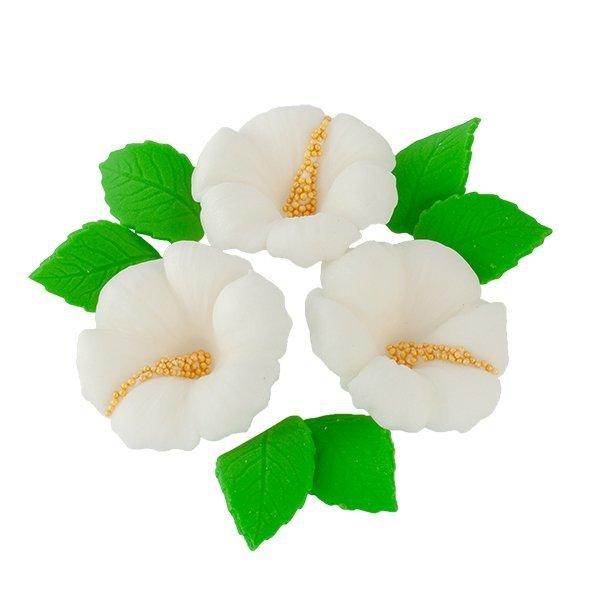 Zestaw cukrowe kwiaty HIBISKUS z listkami (12 kolorów)