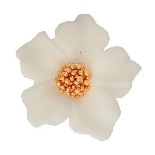 Bodziszek kwiatki cukrowe 10szt białe