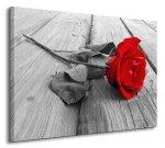 Obraz do salonu - Róża na Pomoście - 80x60 cm
